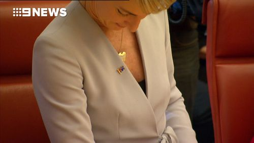 Ministers were given Australian flag lapel pins.