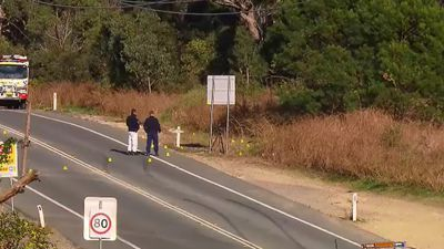 Man dies after being found injured on Lake Macquarie roadside