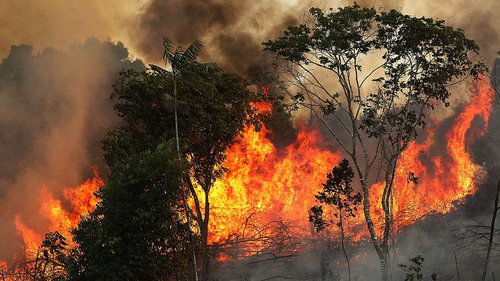 Fires are often set by ranchers to clear shrubs and forest for grazing land in the Amazon basin.