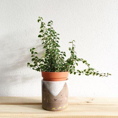 Prop your plants up