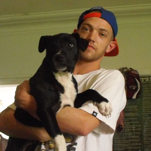 """Liam Anderson is believed to be the 26-year-old killed in a """"bloody assault"""" this morning."""