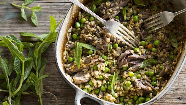Lamb shanks with barley