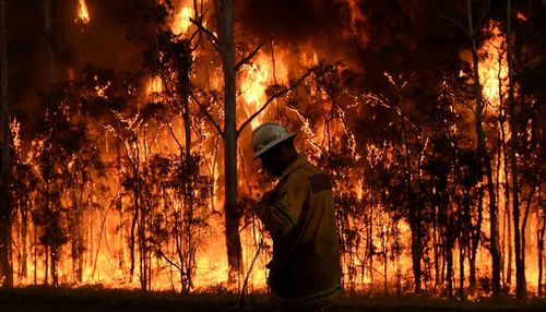 New South Wales Rural Fire Service firefighters are battling blazes in seven regions across the state today.