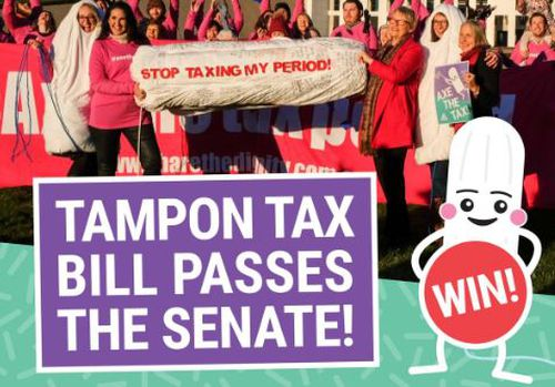 Laws passed in the senate today to remove GST from tampons. Image: Supplied