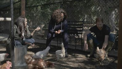Meghan Harry and Oprah with chickens