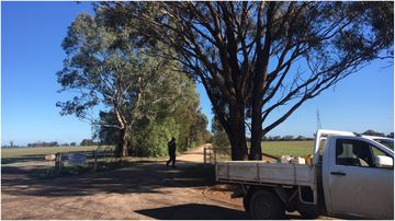 A man has died in a workplace accident at a farm in Raywood, Victoria's north this morning.
