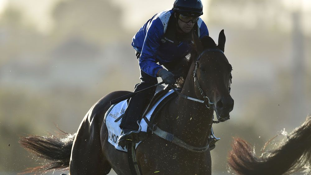 Almoonqith working at Flemington. (AAP)