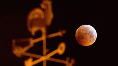 Super Blood Wolf Moon around the globe