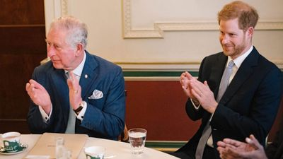 Prince Harry teams up with Prince Charles, December 2018