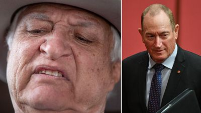'Solid gold': Bob Katter backs Fraser Anning's 'racist' speech