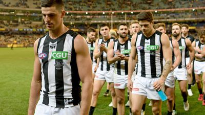<strong>17. Collingwood Magpies</strong>