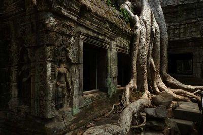 <strong>Lara Croft: Tomb Raider temple inSiem Reap, Cambodia</strong>