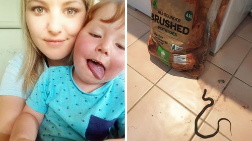 Melissa Davidson with her son Chase, and (right) the snake pictured next to the bag of potatoes she bought at Woolworths.