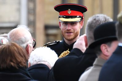 Prince Harry and Queen Elizabeth military titles