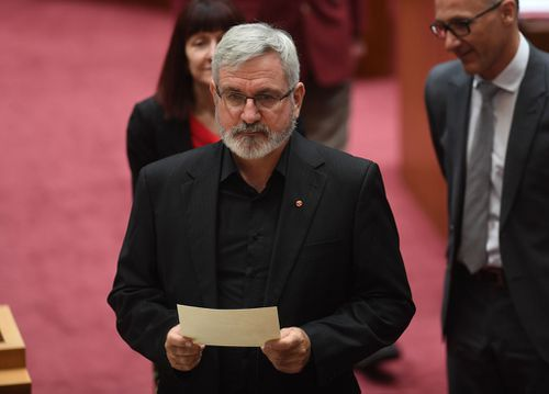 Former Australian Democrats senator Andrew Bartlett has replaced Canadian-born Larissa Water for the Greens (Image: AAP)