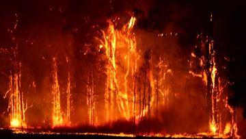 Multiple emergency bushfires raged across NSW last summer.