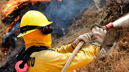 A firefighter battles the Apple Fire in Banning, Calif., Sunday, Aug. 2, 2020.  (AP Photo/Ringo H.W. Chiu)