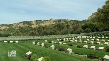 Anzac Day Gallipoli cancelled