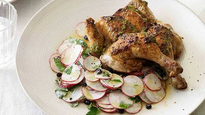 Roast spatchcocks with radish and currant salad
