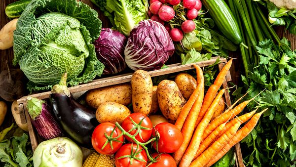 what happens to your body when you start eating more vegetables 9coach