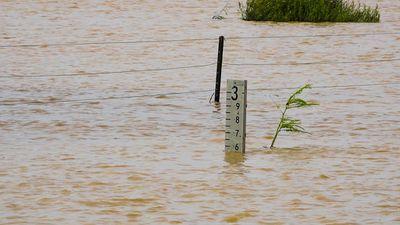 <p>The flood marker on the Winton-Jundah Road. </p><p>(Supplied / Nick McGrath, Winton Shire Council)</p>