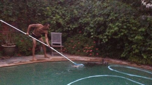 Mrs Nankivell's son-in-law shooing the marsupial out of the pool with a pool cleaning scoop. (Supplied)