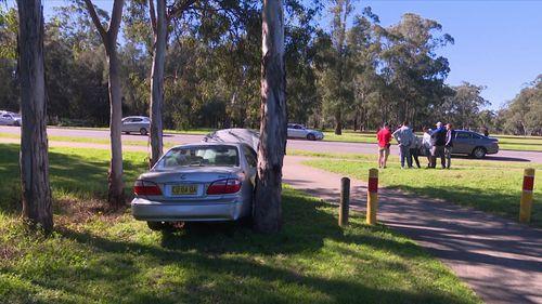The car came to a halt in a park.