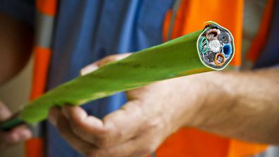 An NBN cable. Australia's internet is among the slowest in the developed world.