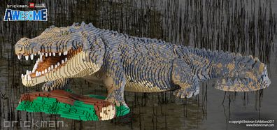 Looking for a giant LEGO crocodile? Look no further than the Brickman Awesome Exhibition in Newcastle.