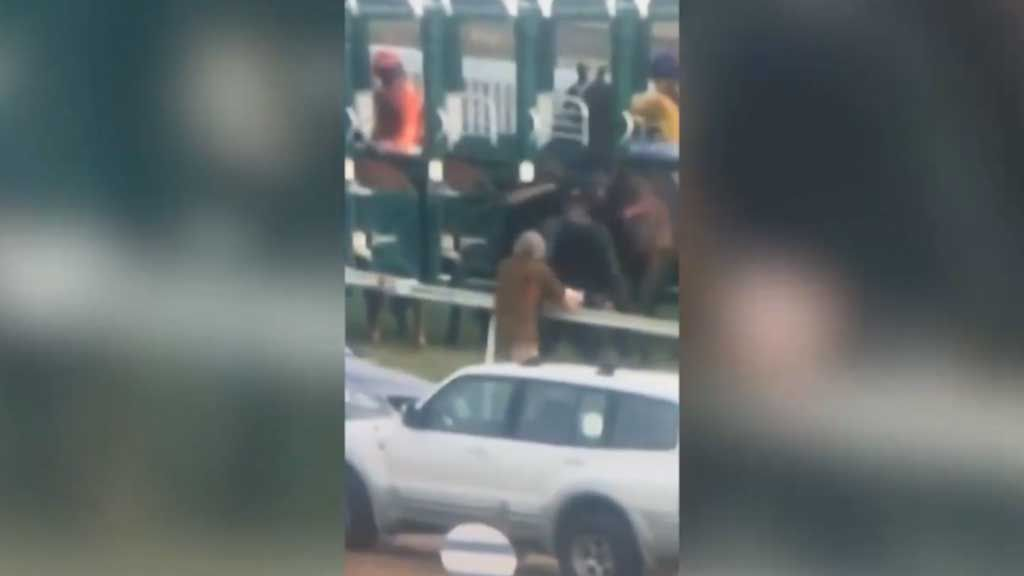 Barrier attendant punches horse