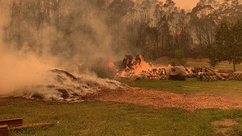Mogo Wildlife Park on fire