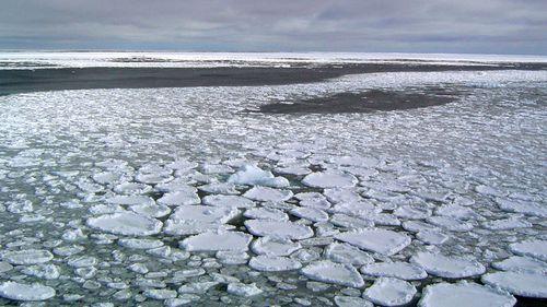 Sea ice on the ocean surrounding Antarctica