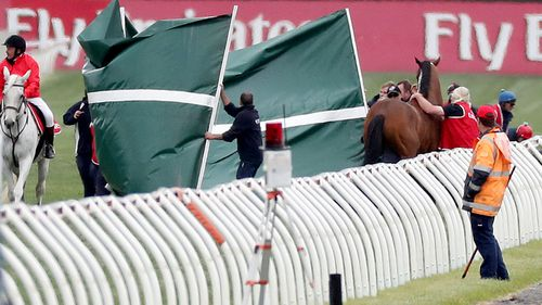 The horse was treated on the track by a vet before being taken away. (AAP)