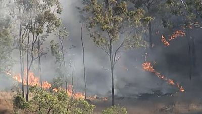 Blaze burning towards Teelah, north-west of Brisbane