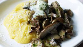 Mushroom, mascarpone and polenta bake