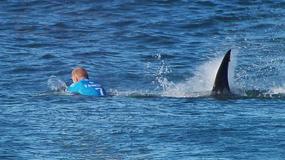 "Former NRL star Jarryd Hayne also tweeted his astonishment: ""Wow @Mick_Fanning shark attack! Good go see your ok champion. Scary footage!!"""