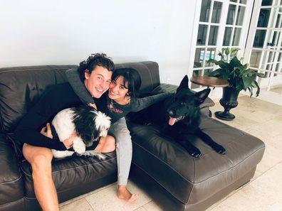 Shawn Mendesm Camila Cabello, home broken into