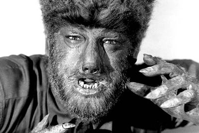 <B>The wolf:</B> Larry (Lon Chaney, Jr) uses a silver-headed walking stick to fend off what he thinks is an ordinary wolf, only to be bitten before he kills it.<br/><br/><B>Scare factor:</B> He probably looked scary in the 40s, but the last 70 years haven't done him any favours — he looks like someone's uncle after a few days without a shave. Benicio did it better in the 2010 remake.
