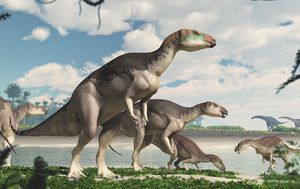 Dinosaurs would have continued to dominate Earth if they had not been wiped out by an asteroid, new research has found