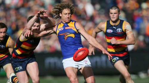 West Coast Eagles player Matt Priddis is the 2014 Brownlow Medal winner. (AAP)