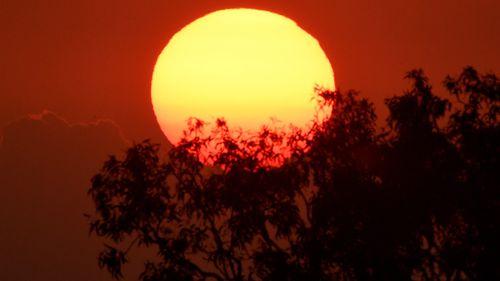 The sun rises over bushland on the eastern seaboard of Australia.