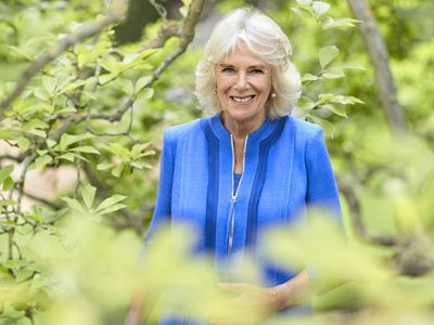Camilla's 73rd birthday portrait, July 2020