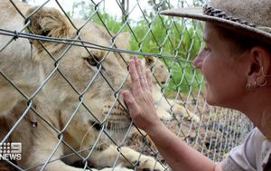 NSW zookeeper Jennifer Brown fighting for life after being attacked by lions in enclosure