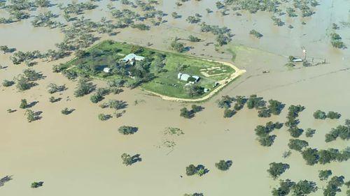 Moree flood