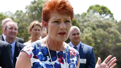 Pauline Hanson calling for national ID card