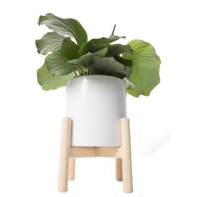 """Planter with stand, $15 <a href=""""http://www.kmart.com.au/product/planter-with-stand/911965"""" target=""""_blank"""">Kmart</a>"""