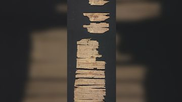Purchased in 2003 from a private collector, the scroll is one of the most complicated and fragile pieces that the Library of Congress has ever treated. It took conservators several years to devise a treatment strategy, and they practiced unrolling techniques on dried-up cigars.