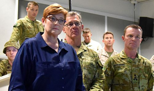 Defence Minister Marie Payne gave government support for a Senate inquiry during her visit to Darwin military bases. (AAP).