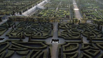 Getting lost in the world's best mazes