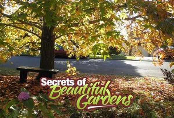 Secrets of Beautiful Gardens